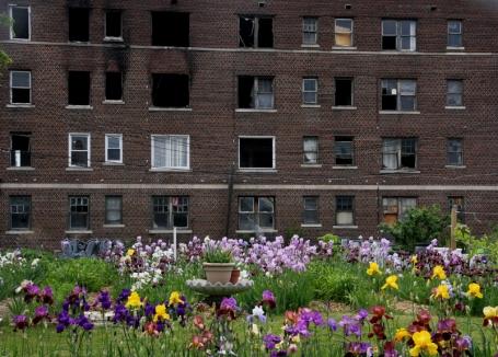 Uitgebrand flatgebouw met in voorgrond community garden Birdland