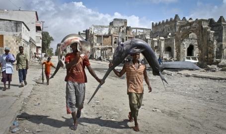 14 mogadisho