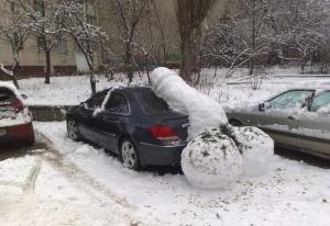 8 snowdick