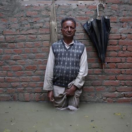 Mendel Kashmir-71 lowres
